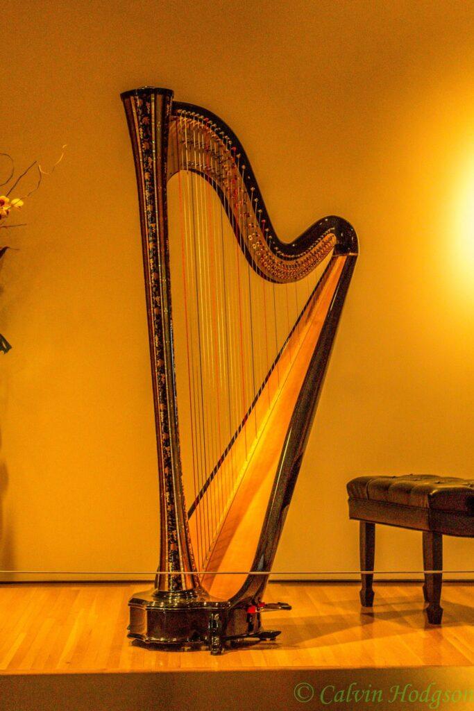 Pouvoirs ladybug harpe